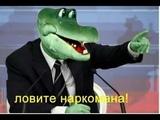 Я крокодил, крокожу и буду крокодить. (Немцы круглого стола)