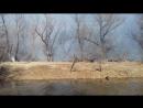 пожар за засранкой горит лес