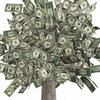 Посади денежное дерево