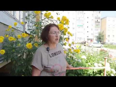 Программа Сад. Огород. Дача от 14.08.2018 г.