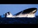 Армия России новая подводная лодка «Ростов-на-Дону» направляется в Крым на Черное море
