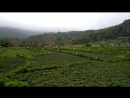 Бали Амед местность1