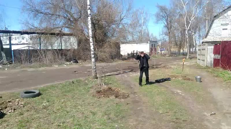 наконец посадили 4 дерева 2019 (16.04.2019 12:55)
