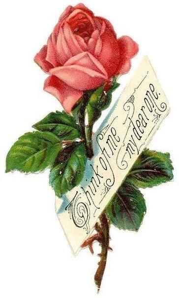 Винтажные розы для скрапа и декупажа (7 фото) - картинка