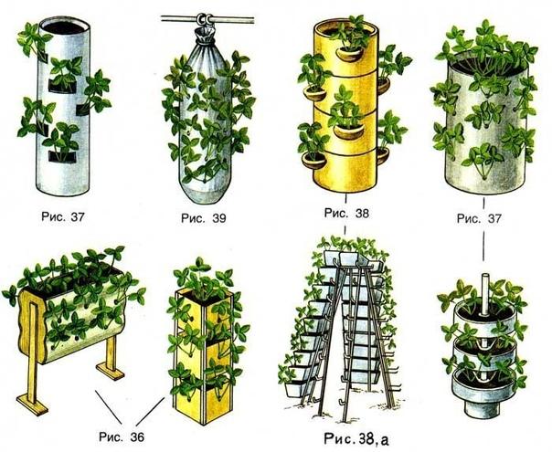 Ежегодно на дачном участке получаем хорошие урожаи различных культур. Помимо обычных сделали вертикальные земляные грядки (колонки). Во многих районах нашей страны, в том числе и нашей области,