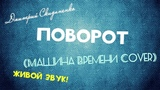 Дмитрий Скиданенко - Поворот (Машина Времени Cover) (ЖИВОЙ ЗВУК!)