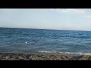 О море плагиат