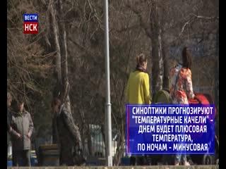 Теплая и облачная погода придёт в Новосибирск на неделе