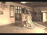 Wu Zu Quan 5 Ancestors Boxing.