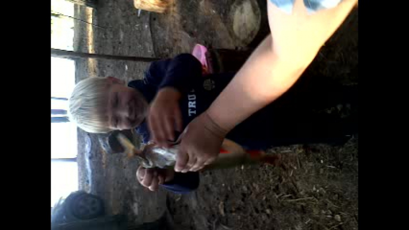 рыбалка Сямозеро
