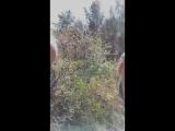 Жибек Жакенова - Live