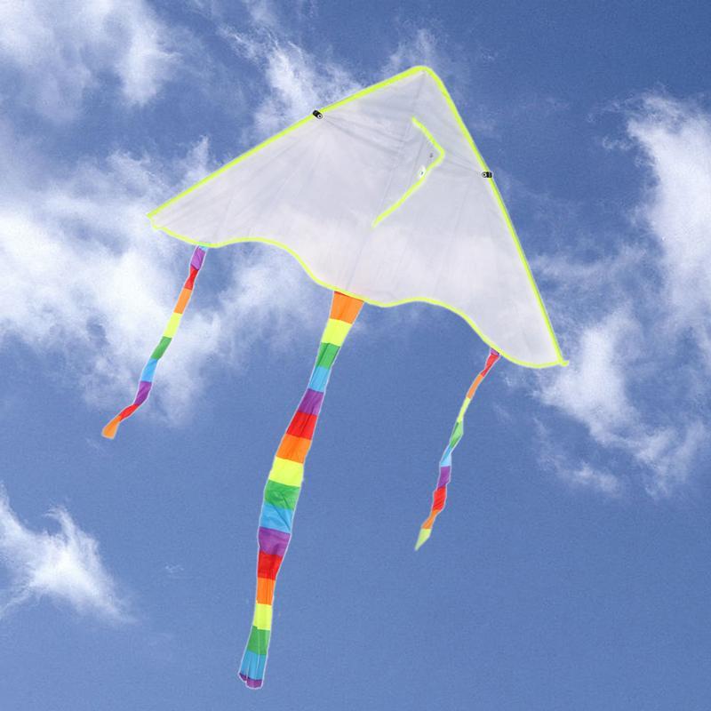 Воздушный змей 102