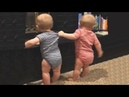 The FUNNIEST and CUTEST video you'll see today! - TWIN BABIES Adorable Moments