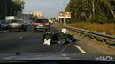 Лось и мотоциклист встретились на дороге