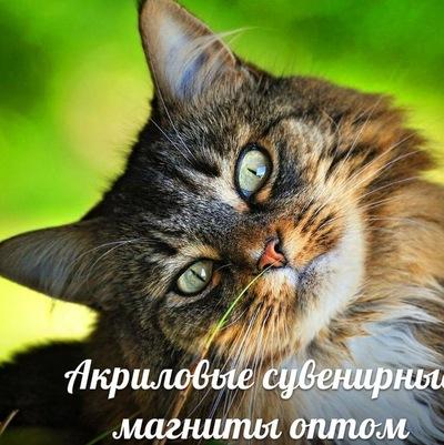 Магнитик На-Ваш-Холодильник, 17 ноября , Москва, id226608081