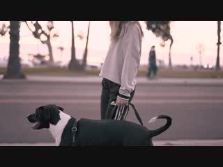 APEK - Exposed (Official Music Video) ft. April Bender