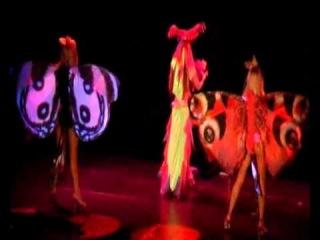 Эротический шоу балет БОГЕМА