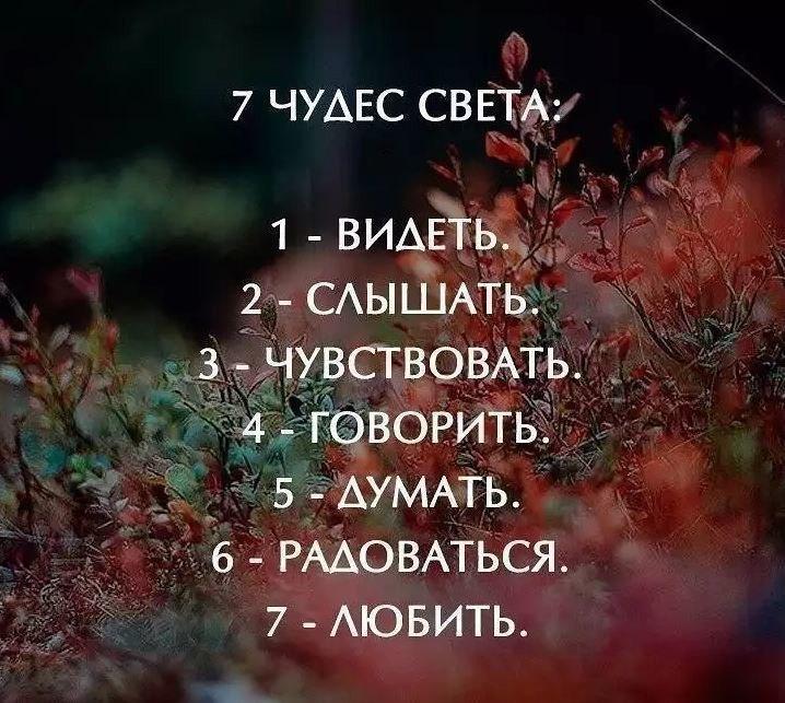 https://pp.userapi.com/c543107/v543107819/292aa/-XuXEsfT5Js.jpg
