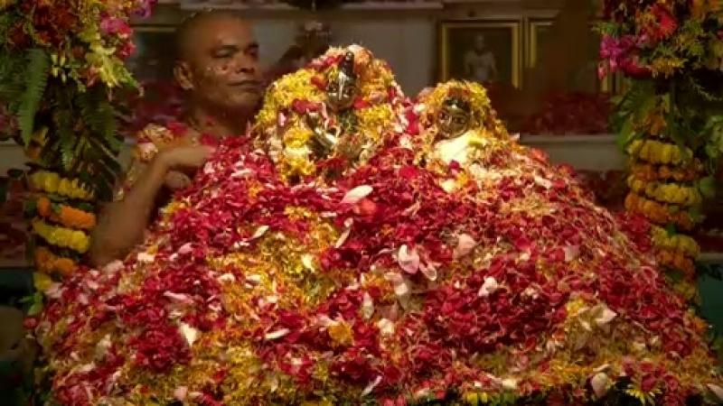 Шри Дхам Маяпур 03 09 2018 Джанмаштами Абхишека окончание
