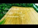 Crop Circle Norridge Wood Warminster Reported 14 08 2018 4K@30fps