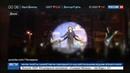 Новости на Россия 24 • Новая песня Чичериной адресована ополченцам и добровольцам Донбасса