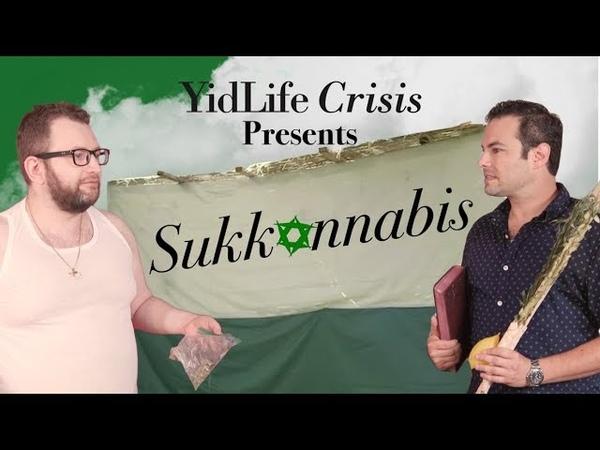 YidLife Crisis: Sukkannabis (Season 3, Episode 1)