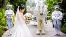 Cinderella's Wedding - Alex Xiaoting's Fairty Tale Disneyland Hotel Wedding Video