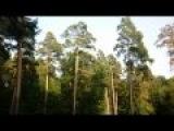 Евгений Мартынов - А любовь права