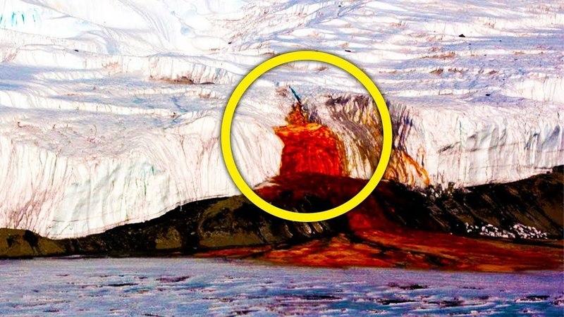 Антарктида под грифом «строго секретно»! Обнаруженное во льдах повергло в ступор даже бывалых.