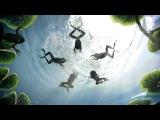 Лягушки и синхронное плавание