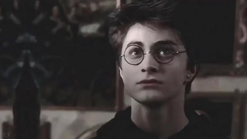 Draco Malfoy vs Harry Potter vs Hermione Granger vine