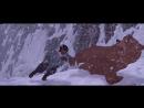 ▲ Братец Медвежонок ▲