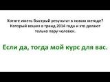 Заработок на блоге 1000 рублей в день