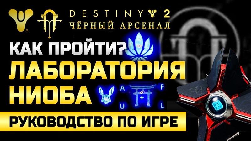 Destiny 2 | Лаборатория Ниоба | Как пройти Как разгадать