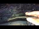 Toyota Land Cruiser Prado 150 жидкие подкрылки - защита арок от коррозии, хозяина авто от шума