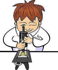Детское экспериментирование как средство интеллектуального и речевого развития.
