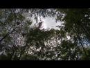 Чебоксарка 23.05.18 вороний остров