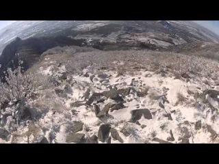 Прогулка по горе Бештау 15.01.2014
