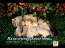 Пример художественного видео (диномичное слайд-шоу) Котята (стихи С. Михалкова)