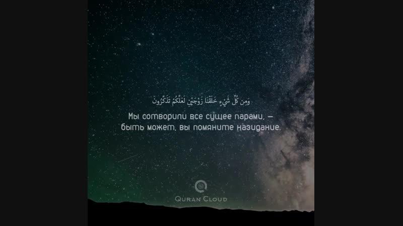 📜Сура 51 «Рассеивающие прах», аяты: 47-51. Чтец: Мишари аль-Багли.