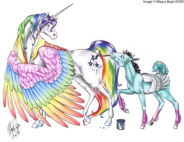 Мой маленький пони: Дружба это чудо 1 сезон - смотреть