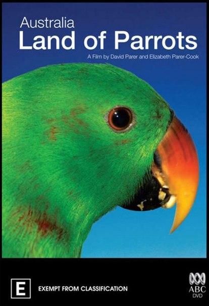 Австралия: страна попугаев