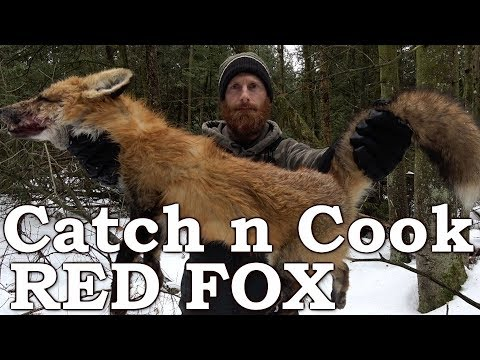 Catch and Cook WILD RED FOX | PRIMITIVE BOW DRILL FIRE | EATING FOX MEAT