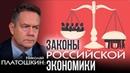Николай Платошкин Экономический план Путина Правительству выгодны низкие зарплаты населения