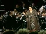 Концерт _La Grande Notte a Verona_, 1988 .mp4