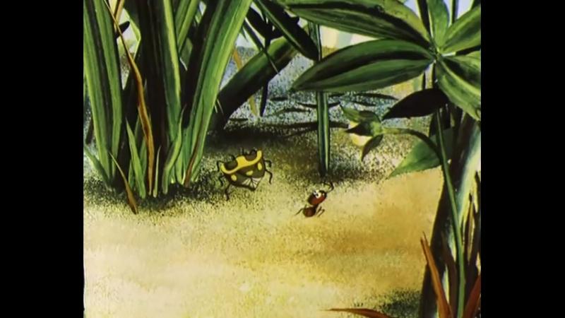 Путешествие муравья Мультфильмы для взрослых.