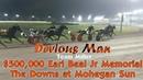 Devious Man 7 1 17 $500 00 Earl Beal Jr Memorial hambo17 harnessracingfz harnessracing