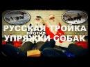 Галилео Русская тройка против упряжки собак