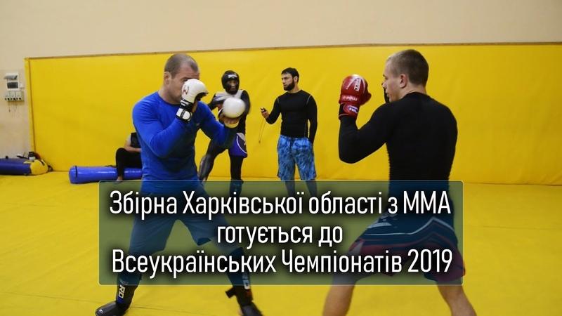 Збірна Харківської області з ММА готується до Всеукраїнських Чемпіонатів 2019