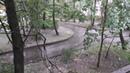 Град, гроза и ливень в Царском Селе. Вот это погода!